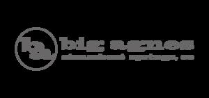 Bigagnes sponsor logo